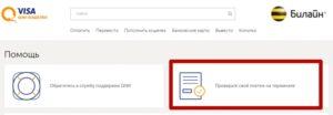 Кнопка «Проверить свой платеж на терминале»