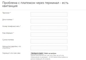 Заполнение информации о платеже