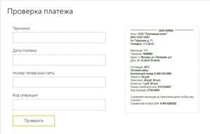 Форма запроса для проверки платежа